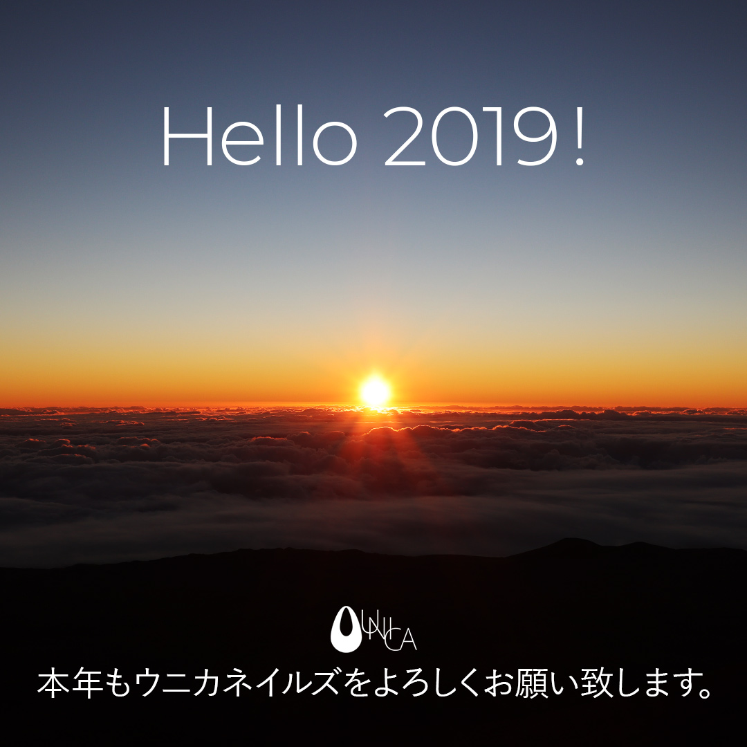2019年 謹んで新春のお慶びを申し上げます